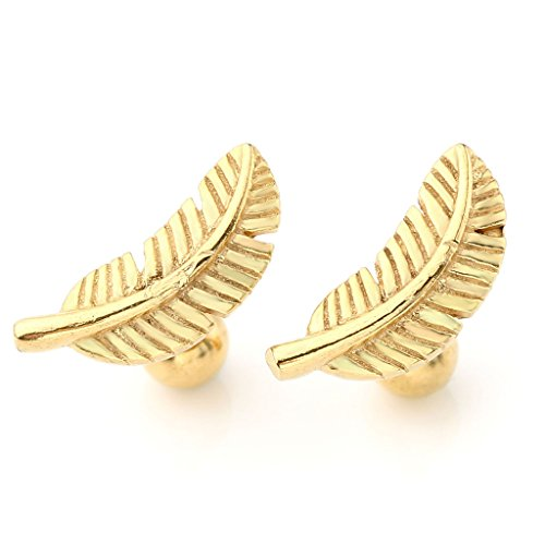 Stainless Barbell Feather Cartilage Earrings