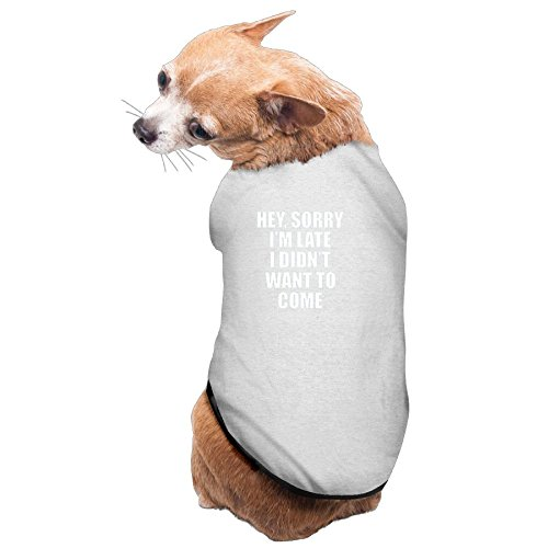 Gray Pet Shirt,Soft Puppy Pet Vest Summer Sweatshirt Printed Dog Clothes Cute T Shirt For Dog Sorry I'm Late I Didn't Want To Come ()