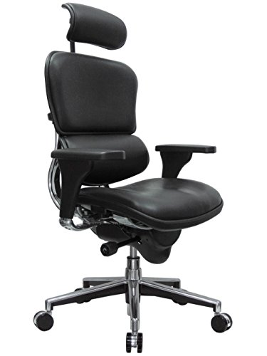 - Eurotech Seating Ergohuman LE9ERG(N) High Back Leather Swivel Chair, Black
