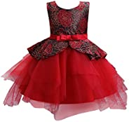 Toddler Girls Princess Dress, Sleeveless Floral Lace Ball Gown Party Dress Clothes 0-6 Years