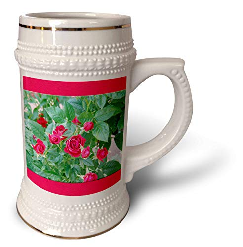 3dRose Jos Fauxtographee- Upper Lower Frame Rose Buds - Red frame upper and lower of some budding red roses - 22oz Stein Mug (stn_307547_1) ()