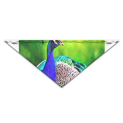 HJudge Dog Bandana Most Beautiful Peacock Dog Scarf Custom Personalized Pet Triangle