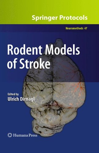 Rodent Models of Stroke (Neuromethods)