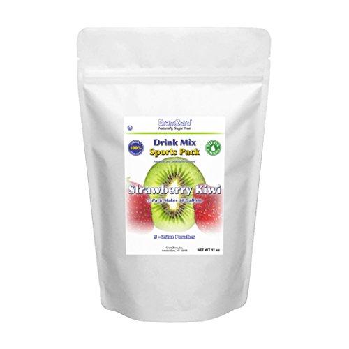 GramZero LG Strawberry Kiwi Drink Mix, 5/2 GALLON Yield (...