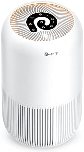 HEPA Air Purifier – Dreamegg Air Purifier for Home Allergies and Pets Hair, Super Quiet Air Cleaner True HEPA Filter with Pet Mode, Removes 99.97% Odor Allergen for Smoker Dust Mold Pollen, 269 Sq. Ft