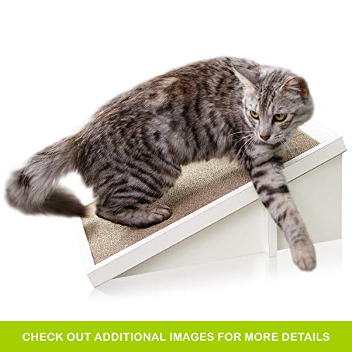 Way Basics Eco Friendly Cat Scratcher Incline, Cat Scratching Pad with Organic Catnip, White (Tool-Free Assembly and Uniquely Crafted from Sustainable Non Toxic zBoard paperboard)