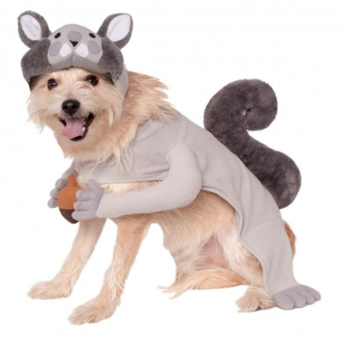 Pets In Costumes Videos (Rubies Costume Company Squirrel Pet Costume, X-Large)