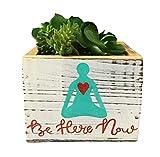 Be Here Now Succulent Planter, Decorative Bin