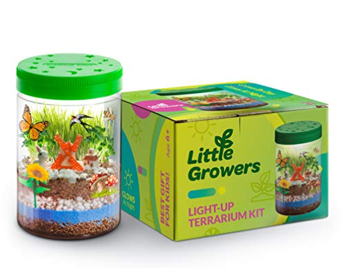 - Momila DIY Terrarium Kit w/ LED Light On Lid - Kids Educational Toys | Science Gifts for Boys & Girls | Arts and Crafts for All Ages - Create a Miniature Garden w/ Lifelike Miniatures
