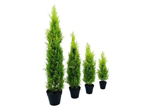 Europalms 61467 Plante de D/écoration Cypr/ès Leyland Vert 60 cm