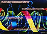This fine, colorful, laminated poster pays tribute to the Amazing Properties of DNA. Perfect for the aspiring Young (or Older) Scientist! This poster is laminated and does not require framing. It will fit easily into a standard 20 x 28 poster frame i...