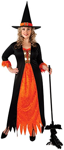 Adults Witch Gothic Costumes (Rubie's Costume Co Women's Gothic Witch Costume, Multi,)