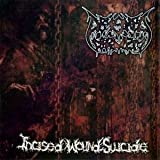 Incised Wound Suicide by Abysmal Torment