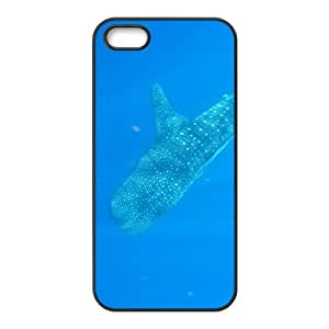 Mild Rhincodon typus Hight Quality Plastic Case for Iphone 5s