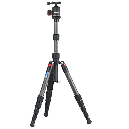 Buddiesman Tripod, Professional Carbon Fibre Tripod for Camera, Foldable&Lightweight for Travel, 360 Degree Ball Head, SLR Digital Cameras Graphic Tools(DT-1551T) by Buddiesman