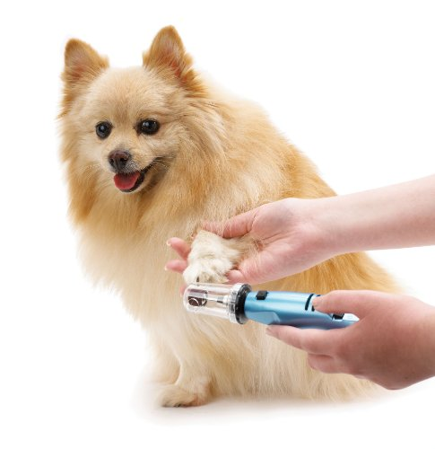 Oster Gentle Paws Premium Nail Grinder for Dogs and Cats
