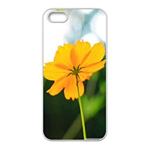 Cosmos Flower in Late Summer IPhone 5,5S Cases, Iphone 5s Cases for Teen Girls Protective Fashionable Okaycosama - White