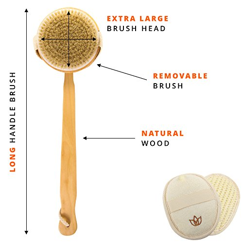 Review Body Scrub Bath Brush