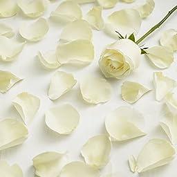 Farm Fresh Natural White Rose Petals - 5000 petals