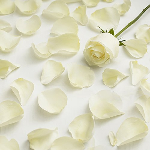 Bags Of White Rose Petals - 4