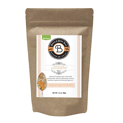Organic Heartburn Relief for Acid Reflux & Pregnancy Heartburn Tea - Lighthearted Tea by Birds & Bees Teas - Refill - A Delicious Natural Remedy for Acid Reflux & Pregnancy Heartburn (~40 Servings)