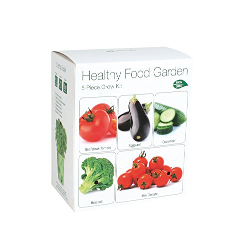 Healthy Food Garden Starter Kit | Grow Eggplant Cucumber Broccoli Beefsteak Tomato amp Mini Tomato from Seed | Complete Gardening Gift Item | Exclusively by TotalGreen Holland
