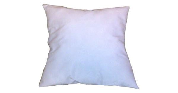 Amazon.com: 35 x 35 Insert almohada cuadrada forma: Home ...