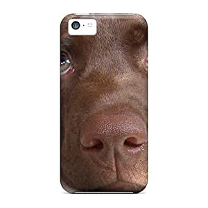 New Diy Design Paddy Of Hunters Cottage For Iphone 5c Cases Comfortable For Lovers And Friends For Christmas Gifts
