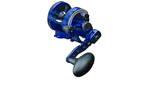 Amazon com : Avet JX 6/3 MC Raptor Reel - Blue - Right
