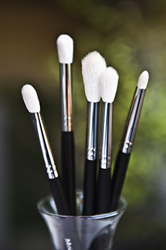 Flawless Blending 5 Brush Set 105