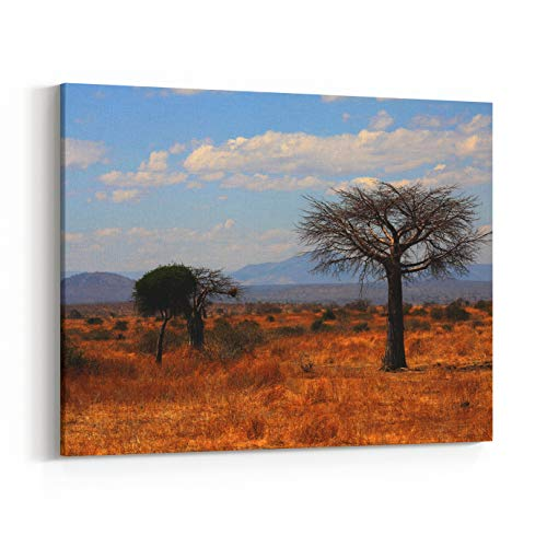 (Rosenberry Rooms Canvas Wall Art Prints - Young Thin Baobab Tree in Plain African Savanna Ruaha National Park, Tanzania, Central Africa (10 x 8 inches) )
