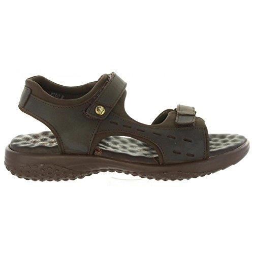 PANAMA JACK Sandalen für Damen Nilo Basics B8 Napa Grass Marron
