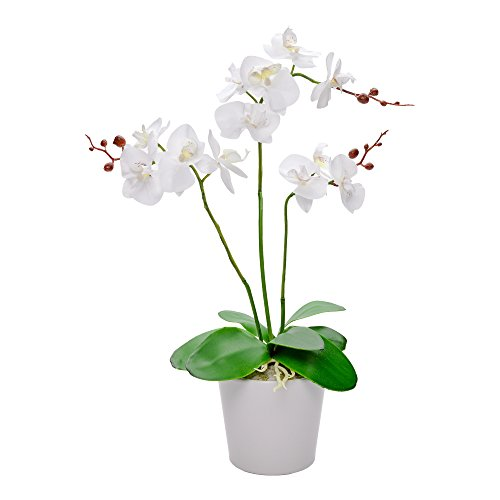 Faux Fiore White Orchid, 12 Blooms - White Pot - Faux Plants - 19.7