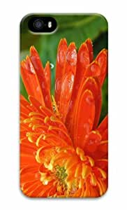 iPhone 5 3D Hard Case Flower 62