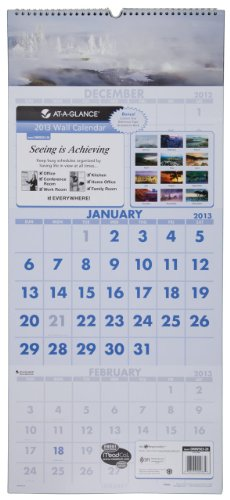 (AT-A-GLANCE Visual Organizer Recycled Scenic Three-Month Wall Calendar, Large Wall, 2013 (DMW503-28))