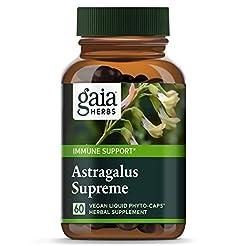 Gaia Herbs Astragalus Supreme, Vegan Liq...