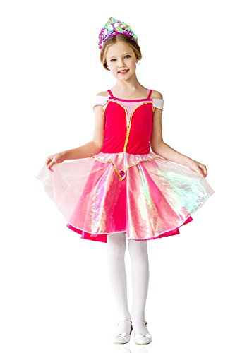 Girls' Illusion Pink Princess Magic Fairy Ballerina Dress Up Halloween Costume (3-6 years, fuchsia)