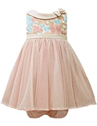 Baby Girls Infant Rose Multicolor Embroidered Bow Collar Texture Tulle Dress