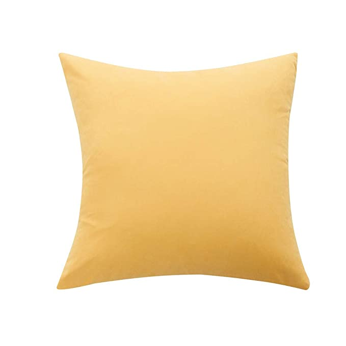 Amazon.com: ThsiJJ Soft Coral Fleece Solid Color Throw ...