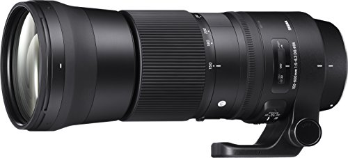 Sigma 150-600mm 5-6.3 Contemporary DG OS HSM Lens for Canon (Best 500mm Lens For Canon)