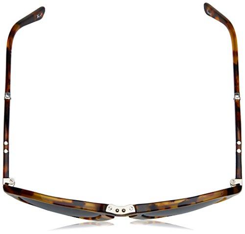 Madreperla 57 0714 Gafas Sol Mod Marrón 24 Persol Bluedarkbluepolar de xT6nqn8