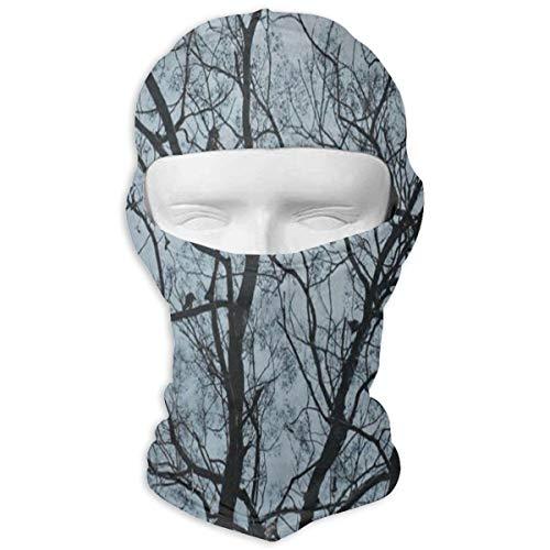 Balaclava Brich Tree Forest Bird Sky Full Face Masks Motorcycle Neck Hood (Trees Brich)