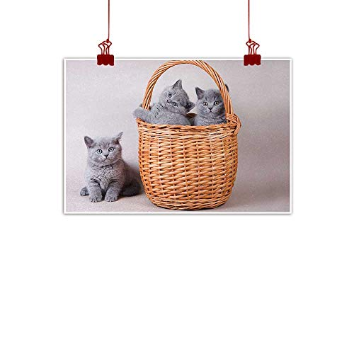 Sunset glow Fabric Cloth Rolled Kitten,Three British Cats Kitties in Basket Adorable Baby Animals Fluffy Pets,Grey Pale Brown Dust 48