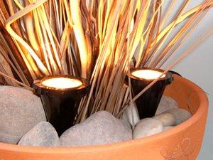 Indoor House Pot Plant Uplighters Spot Lights X2 Amazon Co Uk