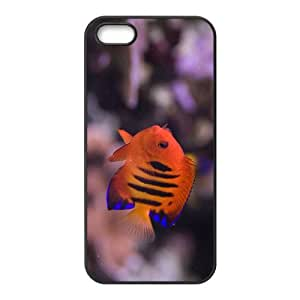 The Charming Fish Hight Quality Plastic Case for Iphone 5s