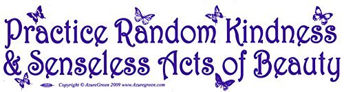 Practice Random Kindness and Senseless Acts of Beauty - Bumper Sticker / Decal (11.5