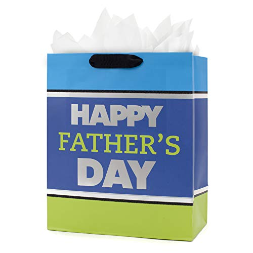 Hallmark Large Father's Day Gift Bag with Tissue Paper (Blue and Green)