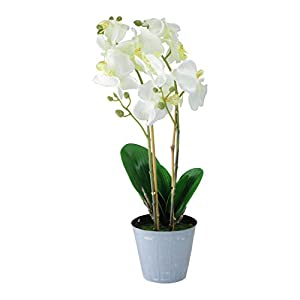 "Northlight 16.5"" White and Green Potted Artificial Phalaenopsis Orchid Flower Plant 27"