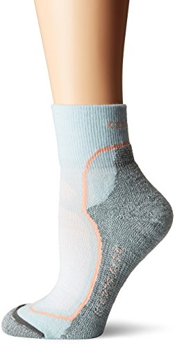 (Icebreaker Merino Women's Hike+ Light Mini Socks, Dew/Sorbet/Metal, Small)