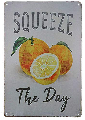 - TISOSO Tin Signs Vintage Metal Designs Squeeze The Day Funny Retro Bar Sign Country Home Decor Outdoor Yard Field Pub Cafe Wall Art Poster 8X12Inch
